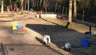 Mini Golf course near Ayron, France by Thomas at BoitedeTimbres 310319