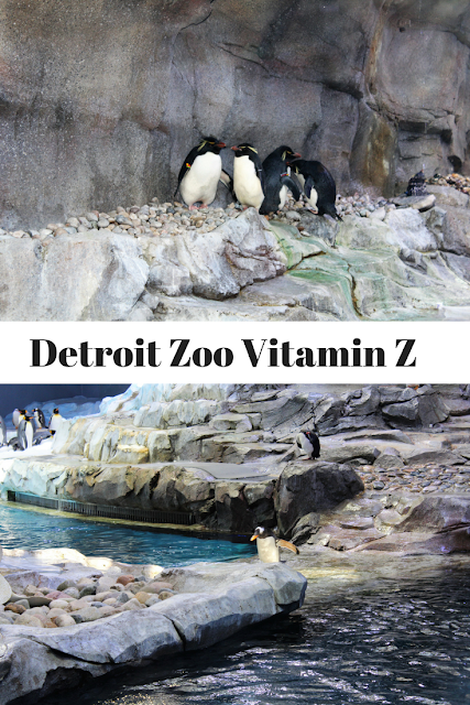 Detroit Zoo Vitamin Z, Metro Detroit, zoo, kids, family, kids, things to do, travel,