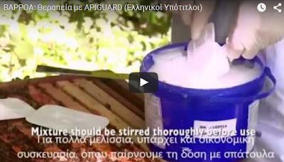 Οδηγίες για βιολογική καταπολέμηση της βαρρόα με το APIGUARD VIDEO