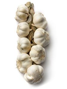 garlic ile ilgili görsel sonucu