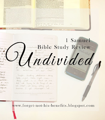 Undivided: A Study in 1 Samuel Bible Study Review