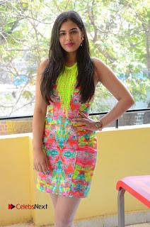 Telugu Actress Prasanna Stills in Short Dress at Inkenti Nuvve Cheppu Press Meet Stills  0030.JPG