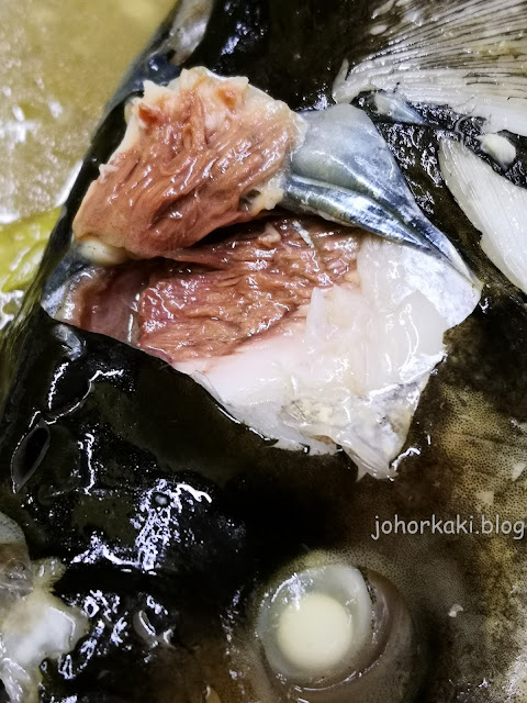 Ong-Lai-(Goh-Kee)-Steamed-Song-Fish-Head-Orh- Chien-旺來(吳記)飯檔