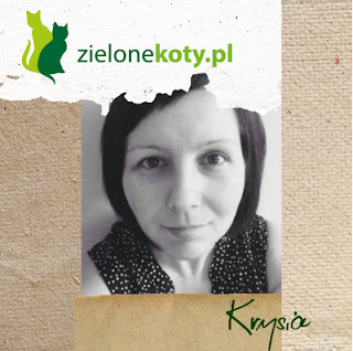 http://krychulowo.blogspot.com/