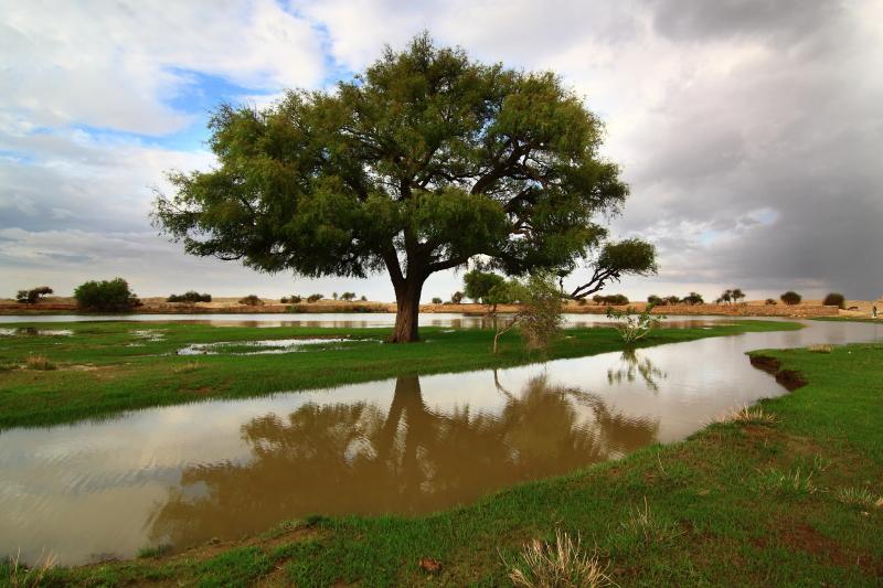 Desert Monsoon Rajasthan Jaisalmer