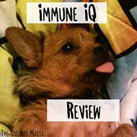 Immune IQ Review
