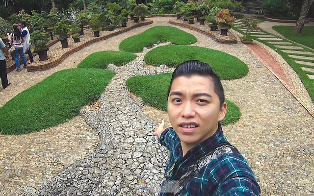 Bonsai shape grass landscape in Royal Agriculture Station Angkhang Visitor Center