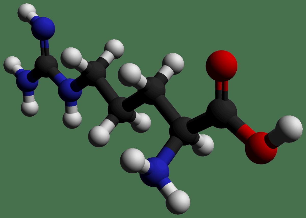 Arginine - Comprehensive Information You Should Know 1