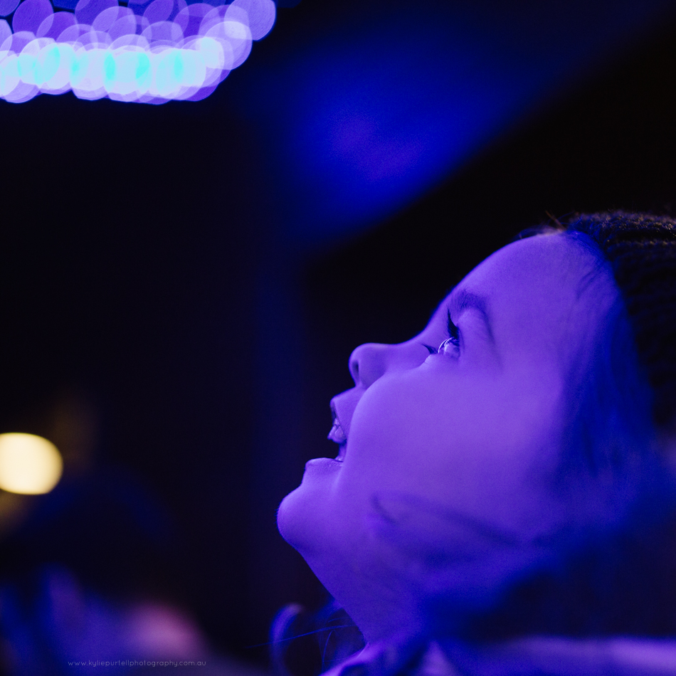 Child looking at fairy lights at Taronga Zoo Sydney