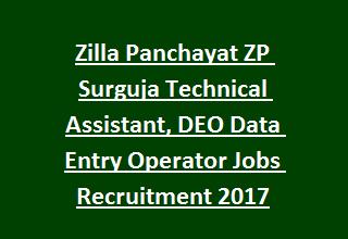 Zilla Panchayat ZP Surguja Technical Assistant, DEO Data Entry Operator Jobs Recruitment 2017