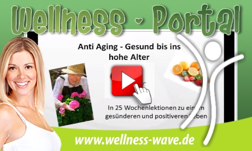 Wellness-Wave-Video-Schulung
