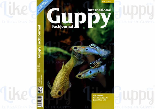 International-Guppy-Fachjournal-N-1-2014