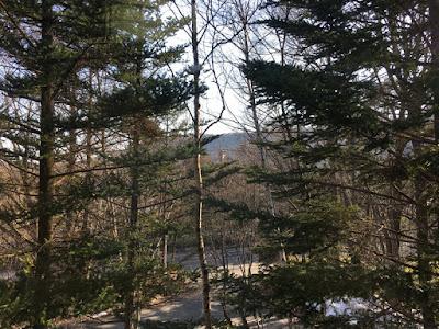 杓凪華の部屋からの景観