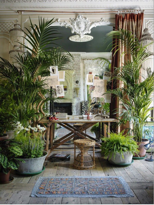 blog deco boheme jungle