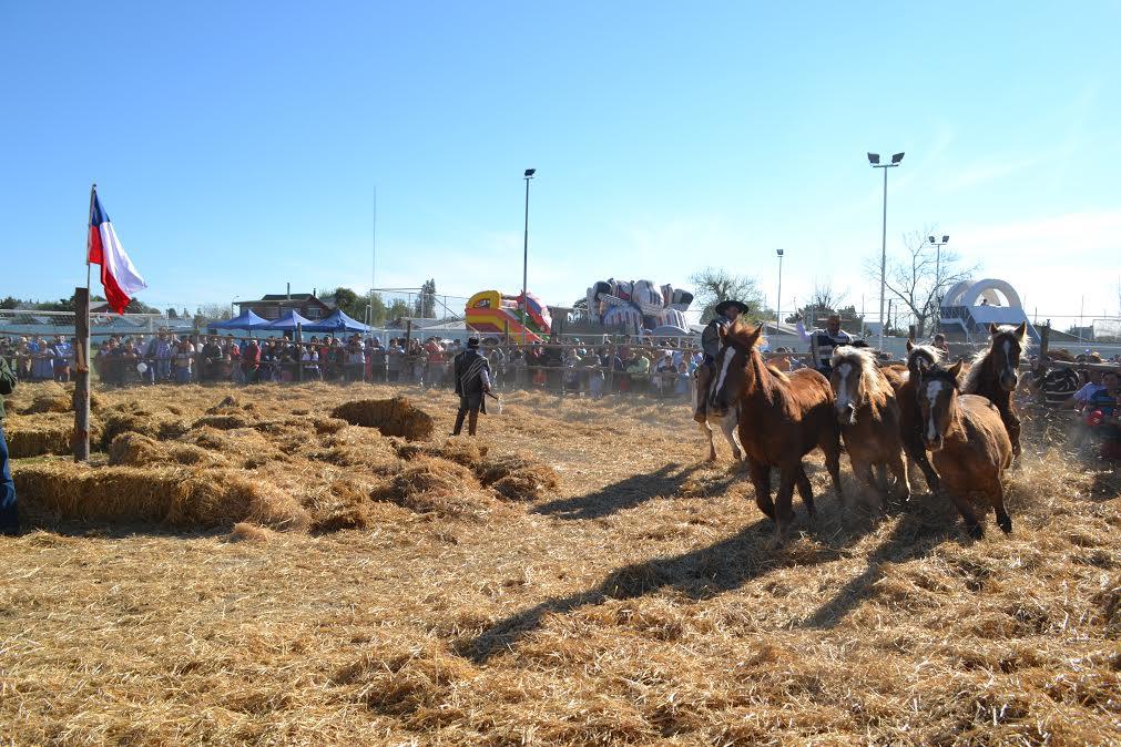 Municipalidad de Parral realizó positivo balance de Fiestas Patrias