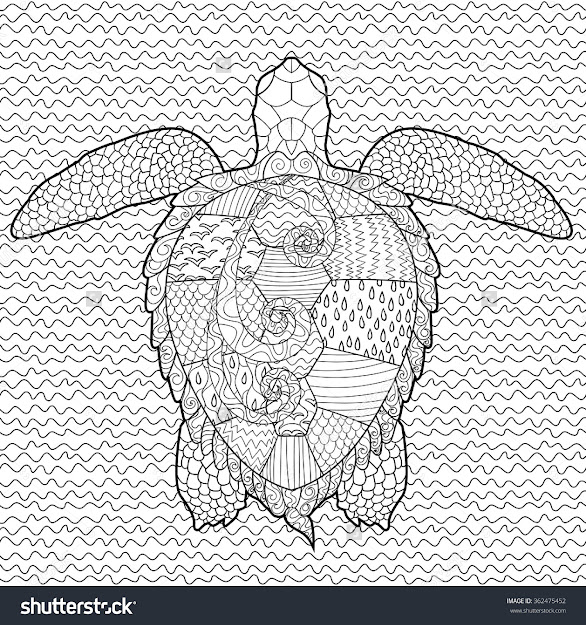 Adult Antistress Coloring Page With Turtle In Zentangle Style Vector
