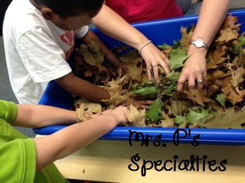 photo of students playing in sensory bin full of leaves