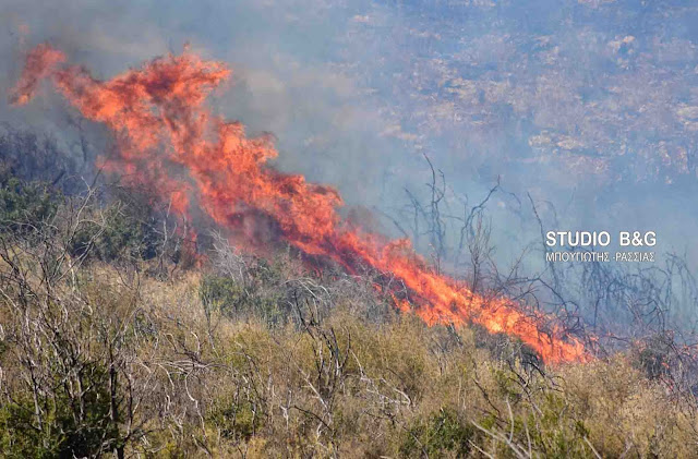 39 δασικές πυρκαγιές το τελευταίο 24ωρο