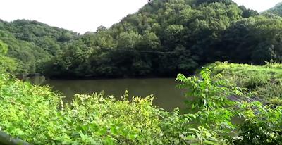 Danau di Rumah Saburomaru