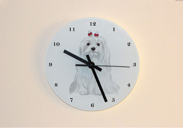zegar z psem