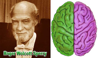 Roger w. Sperry inventor left brain and right brain