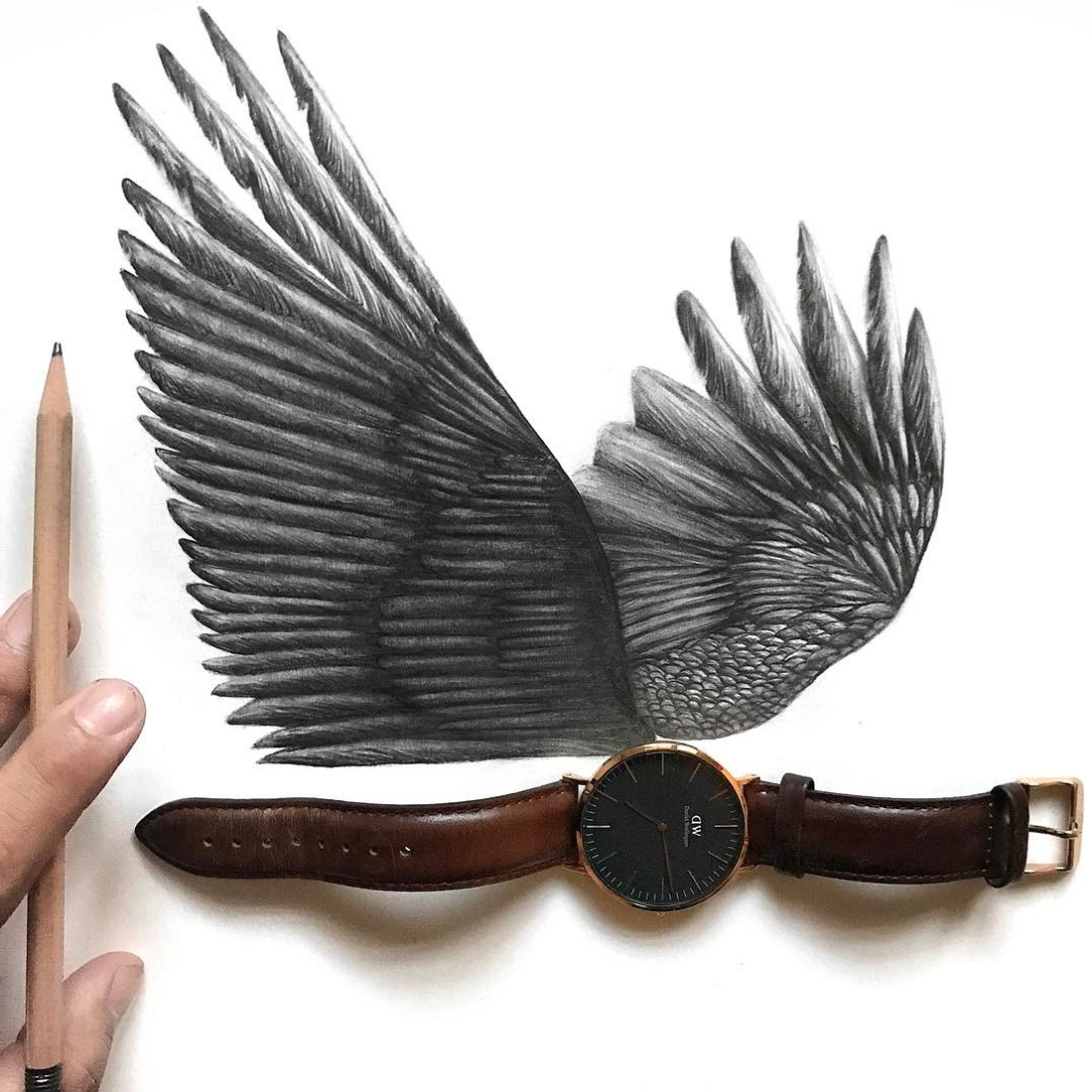 14-The-Wings-of-Time-Jonathan-Martinez-Realistic-Pencil-Animal-Drawings-www-designstack-co