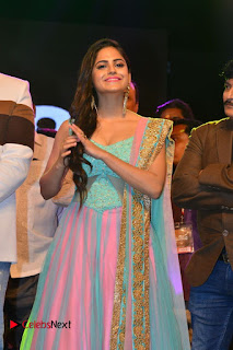 Actress Naina Ganguly Stills in Long Dress at Vangaveeti Audio Launch  0016.JPG
