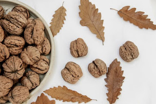 eat walnut to increase memory power