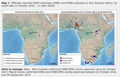 http://www.fao.org/ag/againfo/programmes/en/empres/HPAI_Africa/situation_update.html?utm_source=twitter&utm_medium=social%20media&utm_campaign=faoanimalhealth