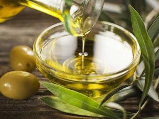 Minyak zaitun bermanfaat untuk kesehatan pengobatan penyakit