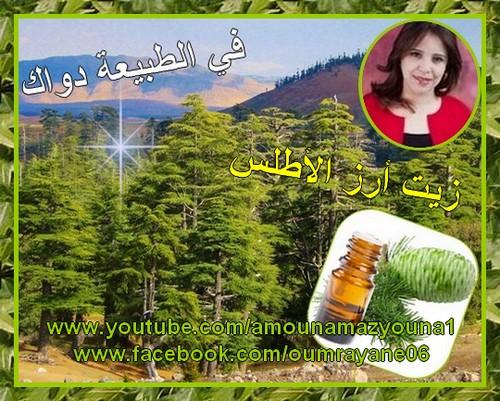 https://youtu.be/NAagBRzSLnY