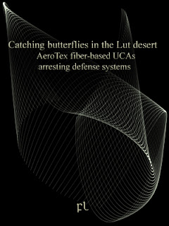 Catching butterflies in the Lut desert Cover