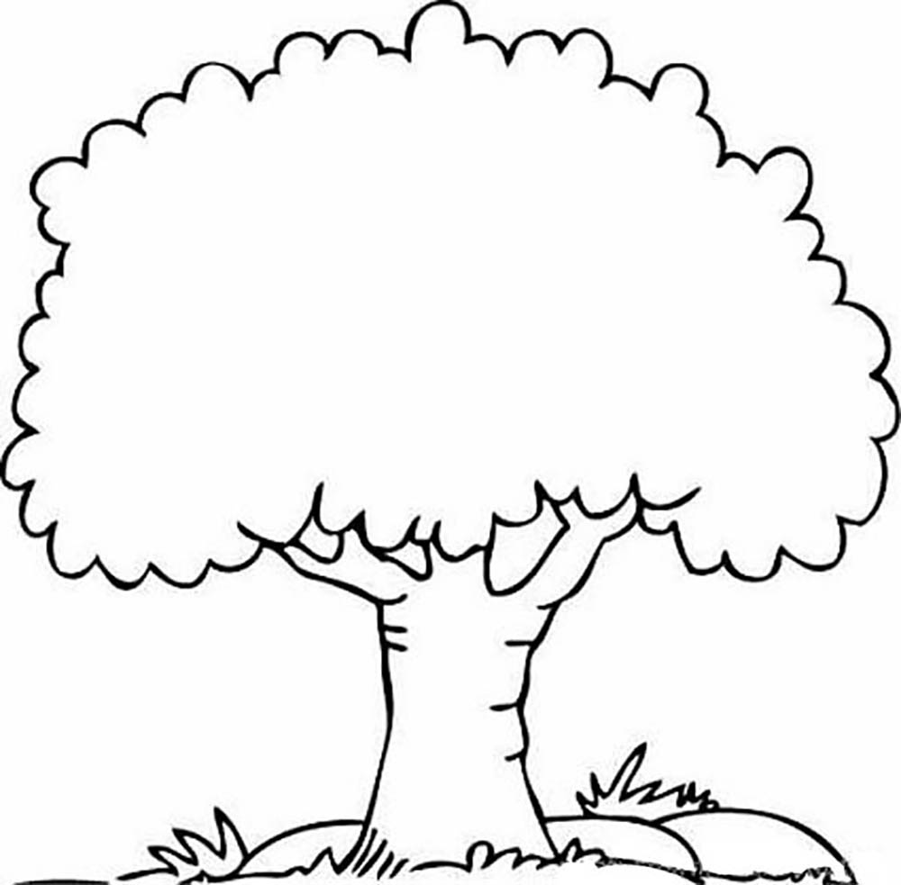 Free Printable Tree Coloring Pages For Kids (With images) | Tree ... | 983x1000
