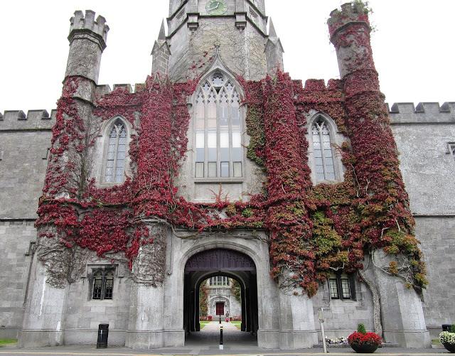 Galway university