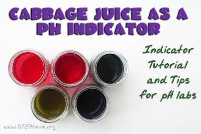 Cabbage Juice as a pH indicator: Tutorial and tips for pH labs from Dr. STEM Mom