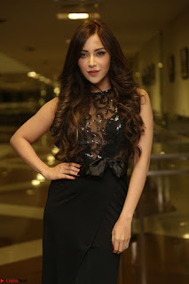 Angela Krislinzki in Transparent Black Gown at Rogue Movie Teaser Launch 1st March 2017 034.JPG