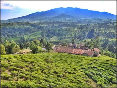 Gunung Kendang