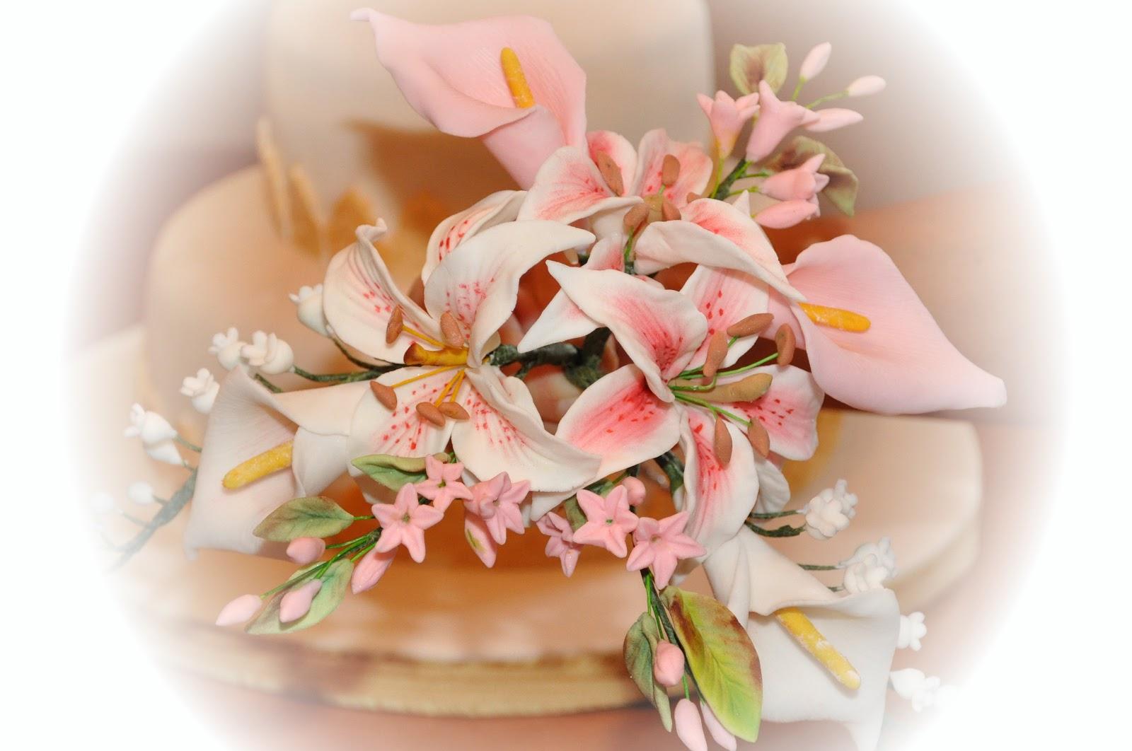 Conosciuto la dolce rosa di monte: Cresima FZ75