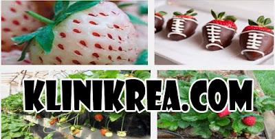 8 Manfaat Kesehatan Strawberry Yang Menajubkan