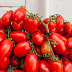 newgersy/Whole tomato extract may prevent, treat stomach cancer