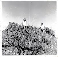Climbing the Hay Wagon