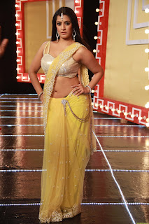 south-actress-hot-saree
