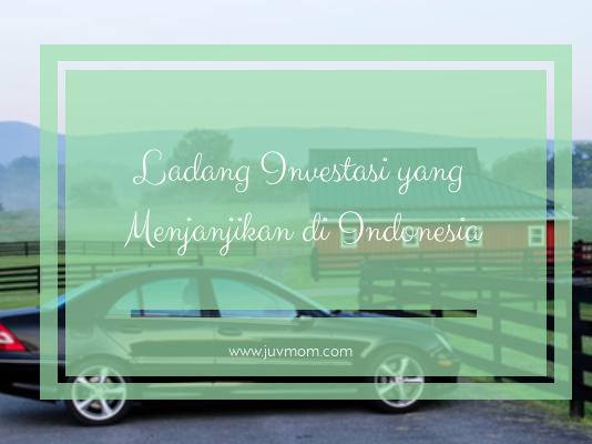 Ladang Investasi yang Menjanjikan di Indonesia