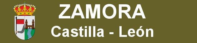http://visitarzamora.blogspot.com.es/