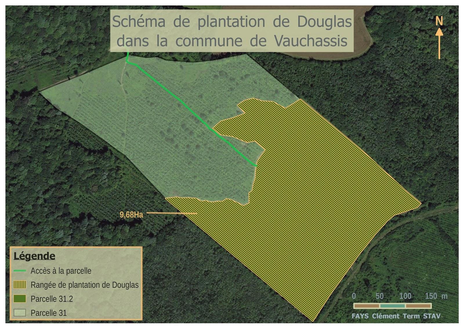 Schéma de plantation de Douglas | Des cartes et des élèves