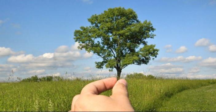 Pengertian Lingkungan Unsur Para Ahli Manfaat Upaya