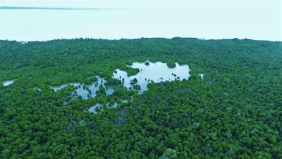 Wisata Bahari Pulau Halang, Rokan Hilir Bagan Siapi api rohil bakar tongkang