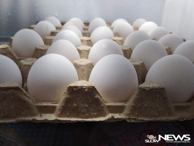 Специалисты Роскачества рассказали, как выбрать яйца