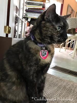 Real Cat Paisley selfie 3