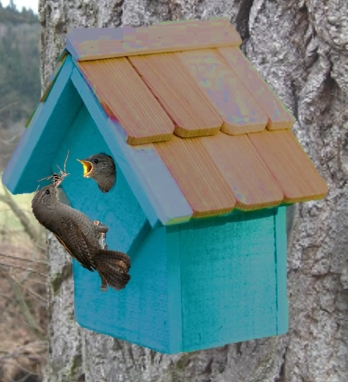 unlimited birds are a natural way to get rid of bugs in your yard